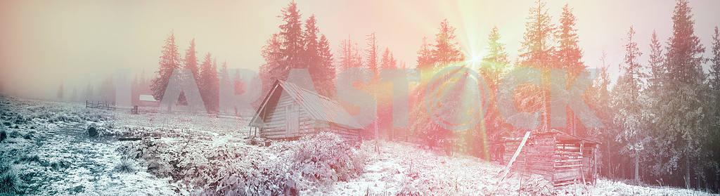 Shepherd huts in a misty forest