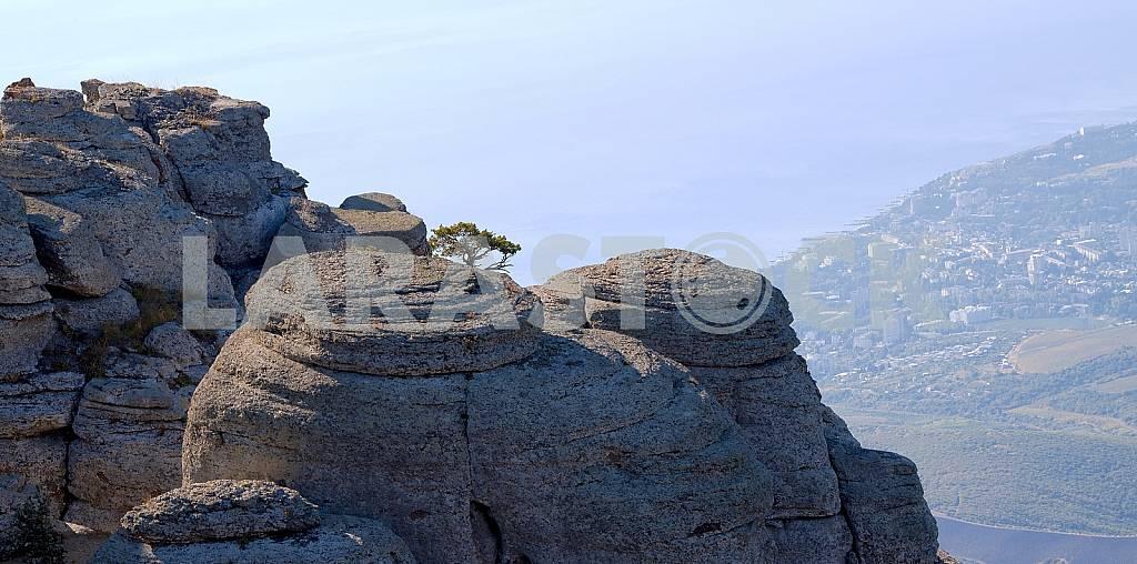 Flat round rocks overlooking the sea.