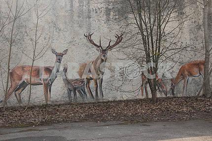 Граффити на стене в Припяти (олени)