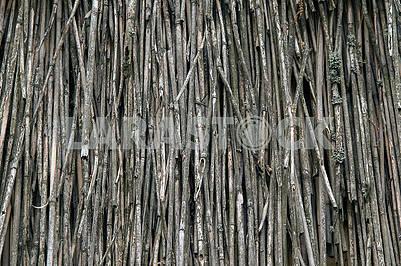 Естественный абстрактный серый фон, текстура сухих камышей.