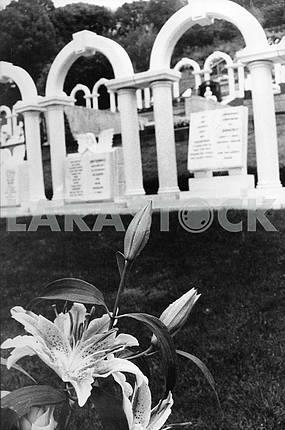 Кладбище Аберфан