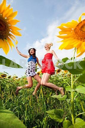 Две подруги веселятся в поле подсолнухов