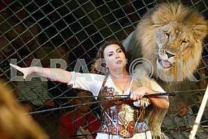 Дрессировщица со львом