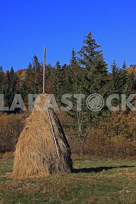 Стог сена на поляне