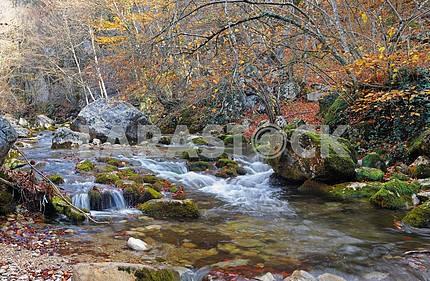 Горная река в осенний лес буковый
