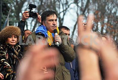 Саакашвили выступает в Мариинском парке
