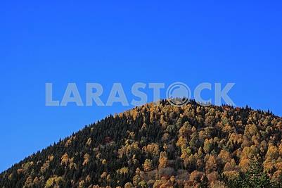 Осенний холм на фоне голубого неба