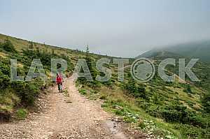 Человек с рюкзаком, едет на велосипеде по горной дороге в Карпатах