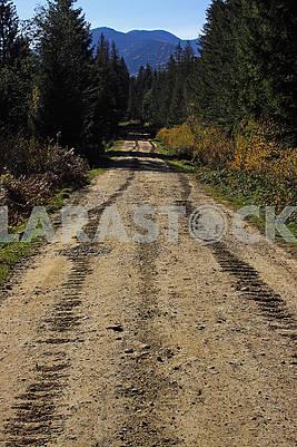 Сліди гусеничного трактора на брудній дорозі