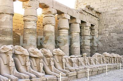 Скульптуры и колонны