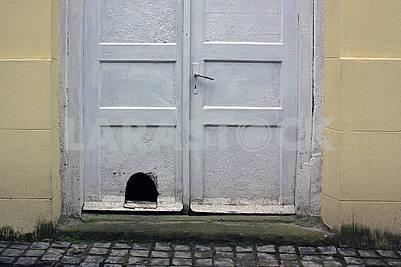 Старая белая грязная деревянная парадная дверь