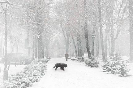 Первый снег в этом сезоне