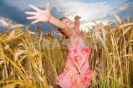 Маленькая девочка прыгает в поле пшеницы. На фоне облачного с