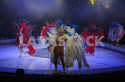 Цирковая танцовщица в ярком костюме