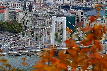 Мост Эржебет через Дунай