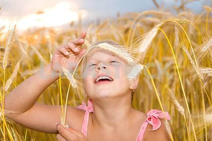 Маленькая девочка в поле пшеницы.