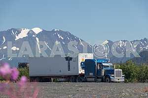 Синий грузовик Петерпилт едет по дороге