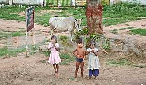 Индийские дети на улице