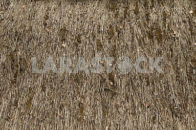 Абстрактная текстура старой соломенной крыши.