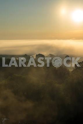 Облака тумана над деревьями и солнце. Село Мезин. Черниговская область