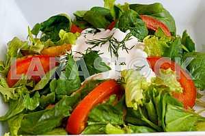 Свежий овощной салат со сметаной