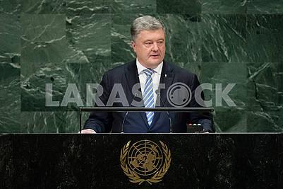 Петр Поршенко на трибуне ООН
