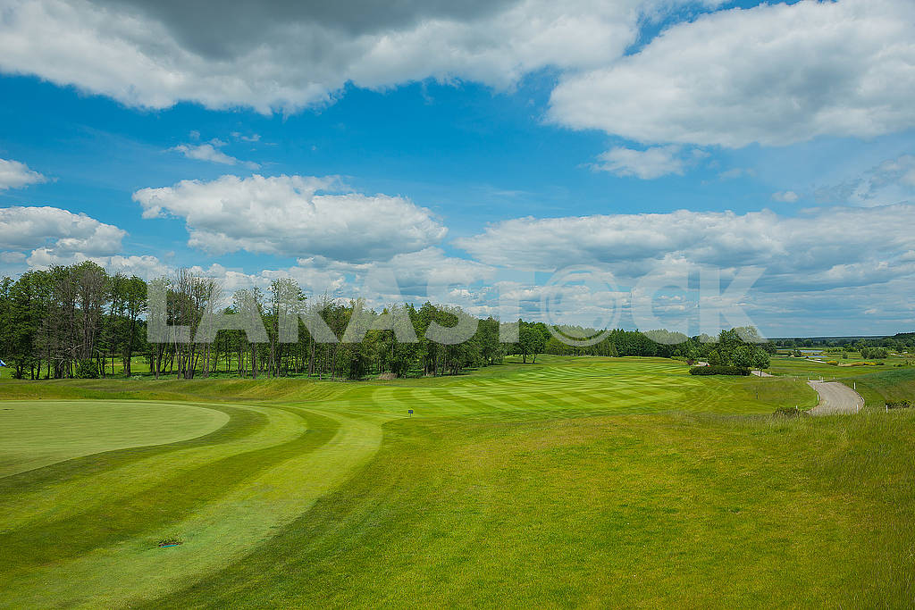 Background with free text space  field with the forrest and blue sky and white clouds  Clipped lawn in a sunny day , a place where to rest — Image 61100