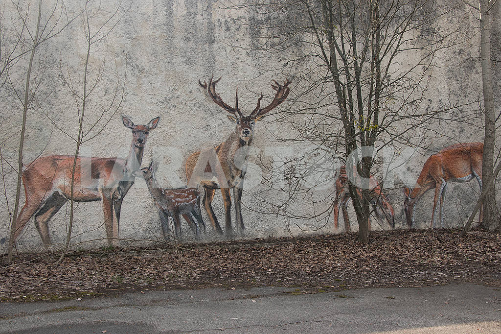 Graffiti on the wall in Pripyat — Image 54530