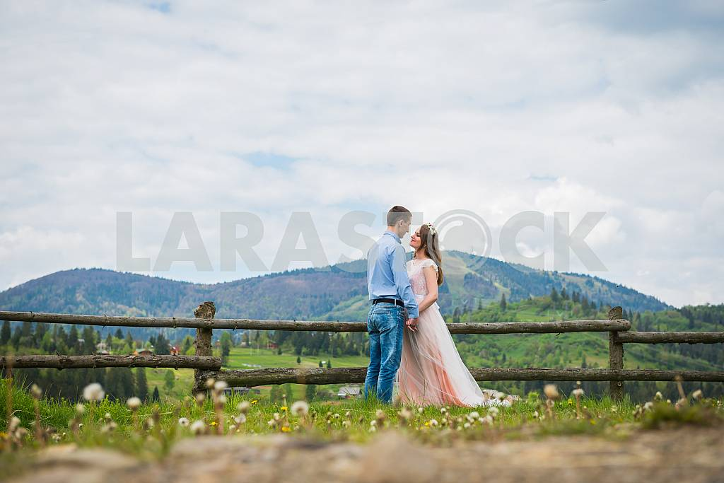 Wedding walk on nature, Happy Bride and Groom Wedding Day, Loving couple marriage, Newlyweds outdoors portrait, soft light, series — Image 31260