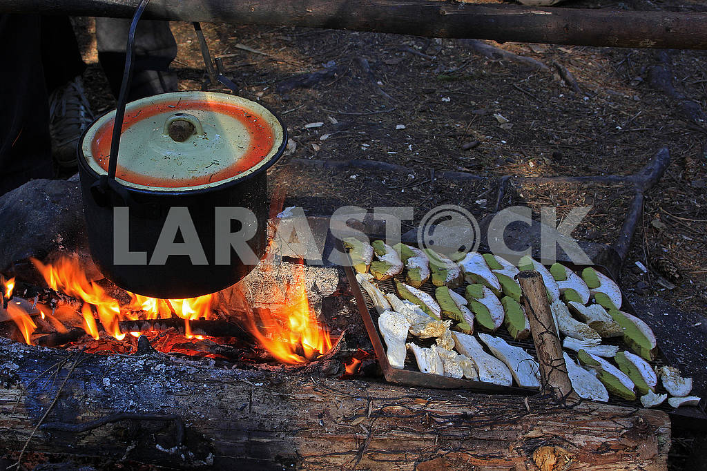 Boiling water is cooked in a metal saucepan. On the embers dry the white mushrooms — Image 63821