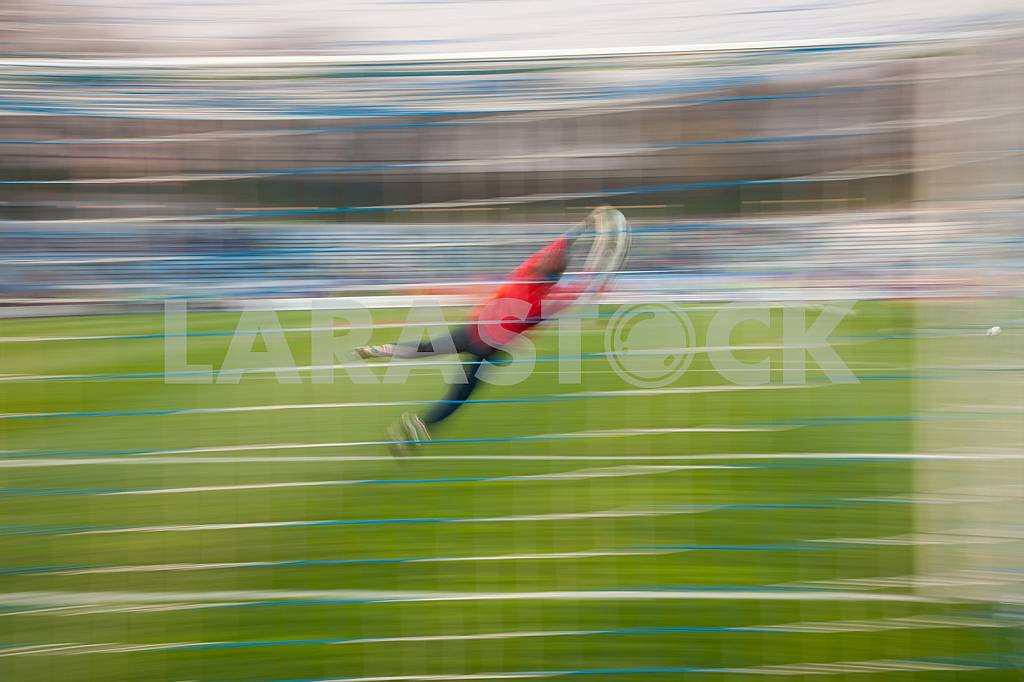 Goalkeeper catches a ball in a jump — Image 22572