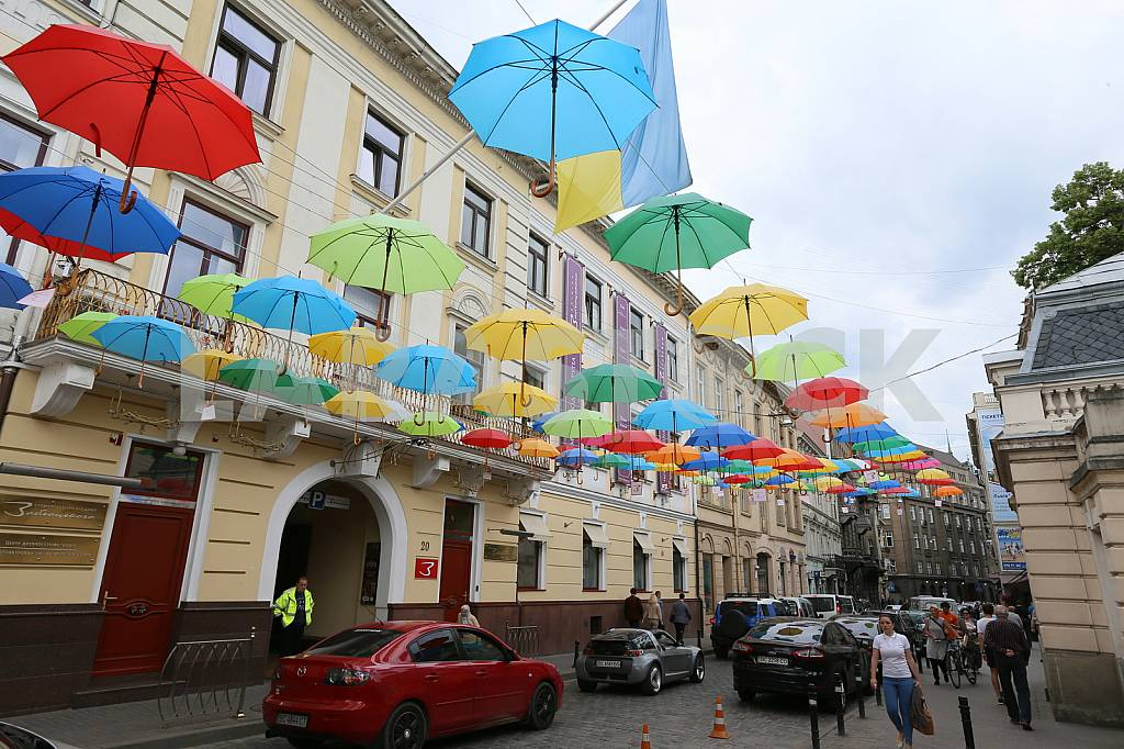 Lions. Umbrellas on Copernicus Street. — Image 33672