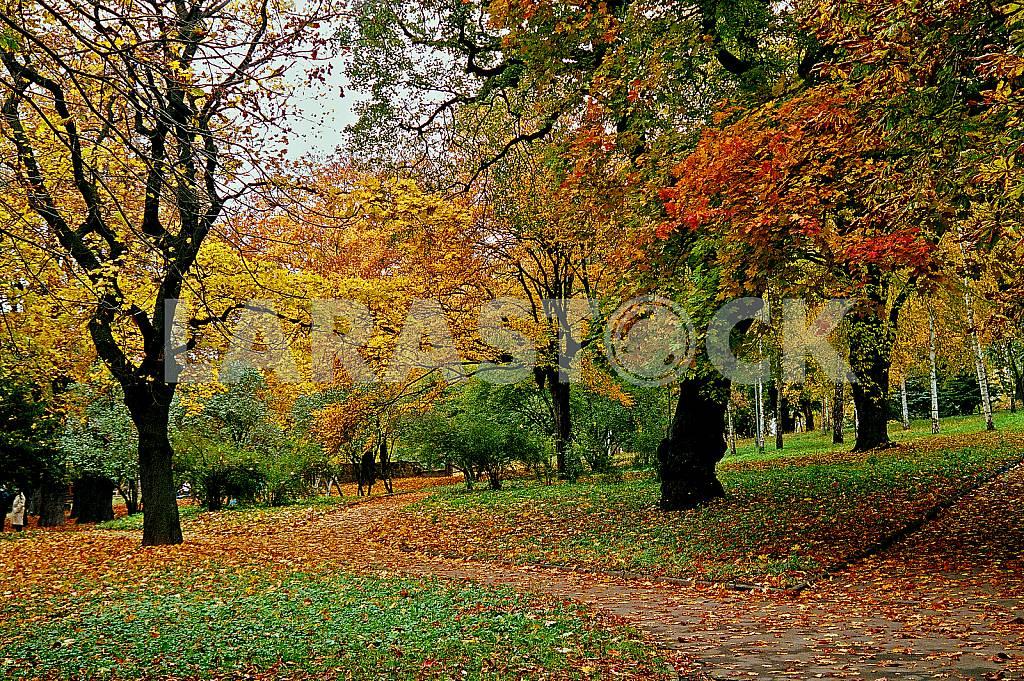 Rivne — Image 31503