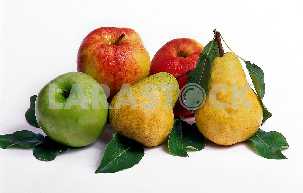 Apples and pears — Image 46803