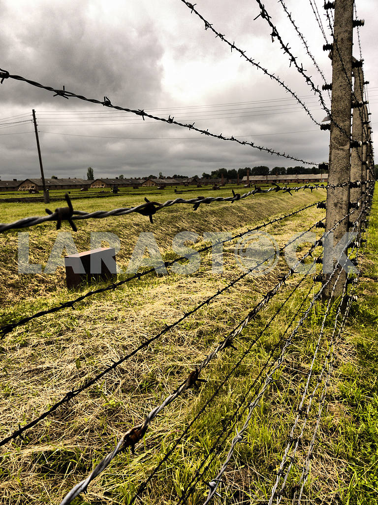 Barbed Wire Fence — Image 46423