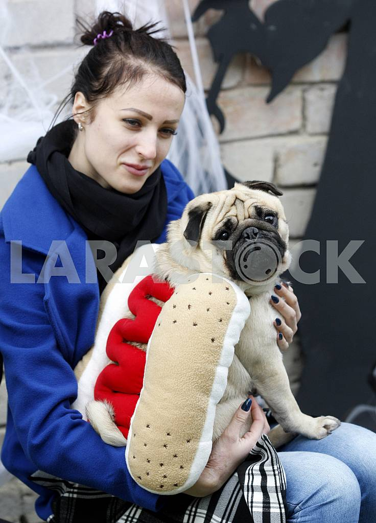 Girl with dog in a suit hotdog — Image 42723