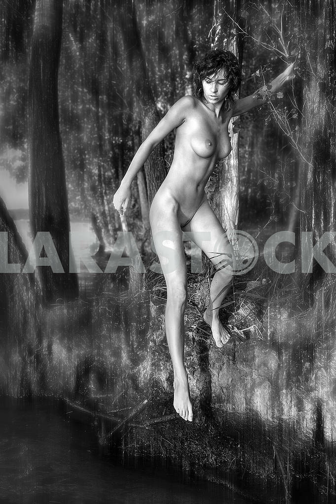 Naked girl in a sexual pose — Image 71023