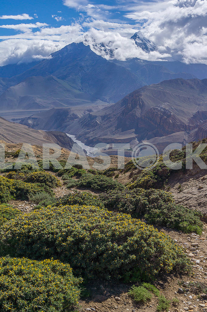 In the mountains of Nepal — Image 49123