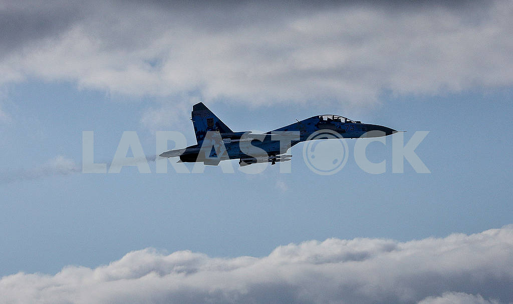 Ukrainian Air Force aircraft in the sky — Image 76883