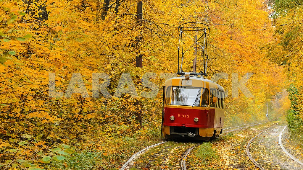 Forest tram line to Puscha-Voditsa, Kiev — Image 1315