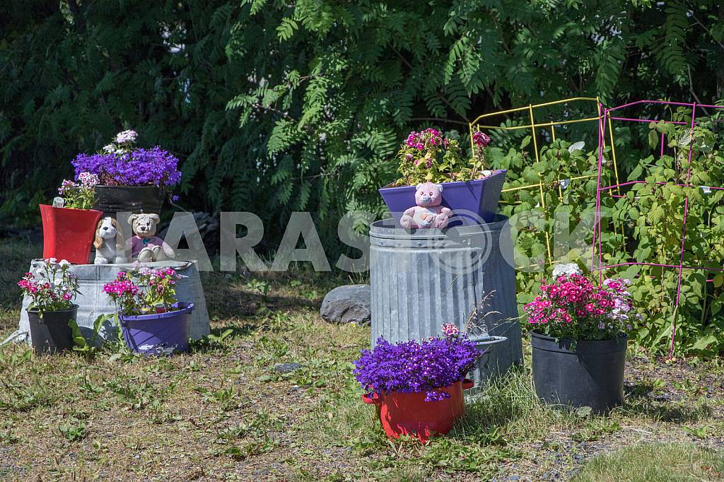 Flowers and toys in the yard — Image 33525