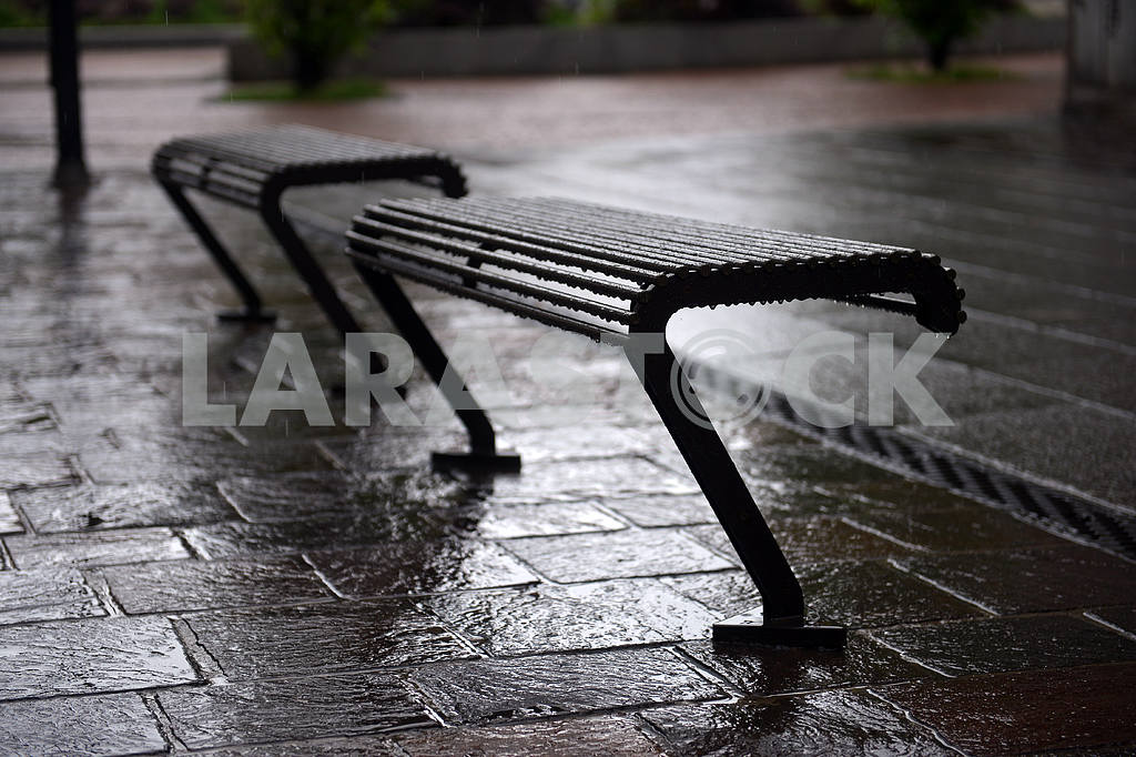 Wet benches in the rain — Image 18755