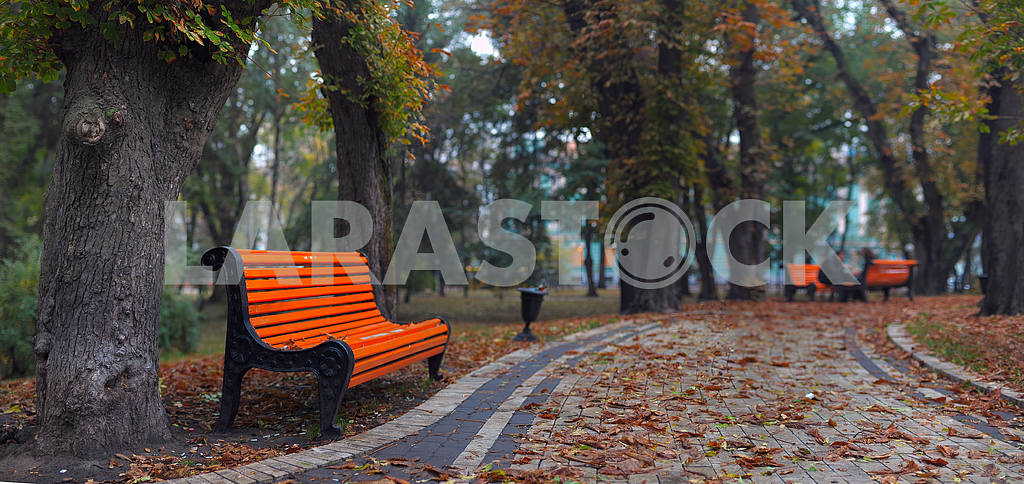 Benches in city park  — Image 3885