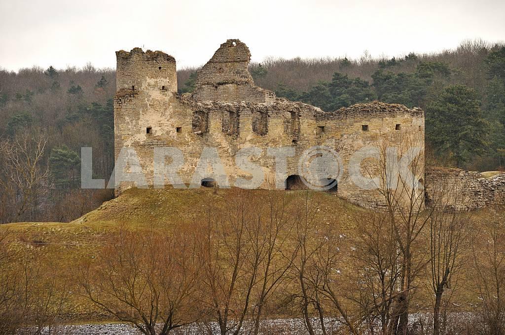 Sydoriv Castle in the village Sidorov — Image 24795