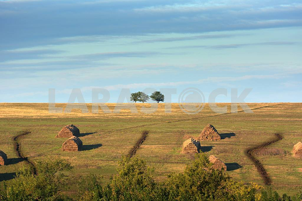 Hay stacks on the field — Image 42395