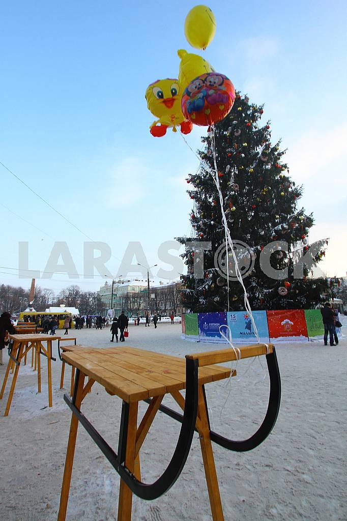 The main tree in Chernivtsi — Image 45016