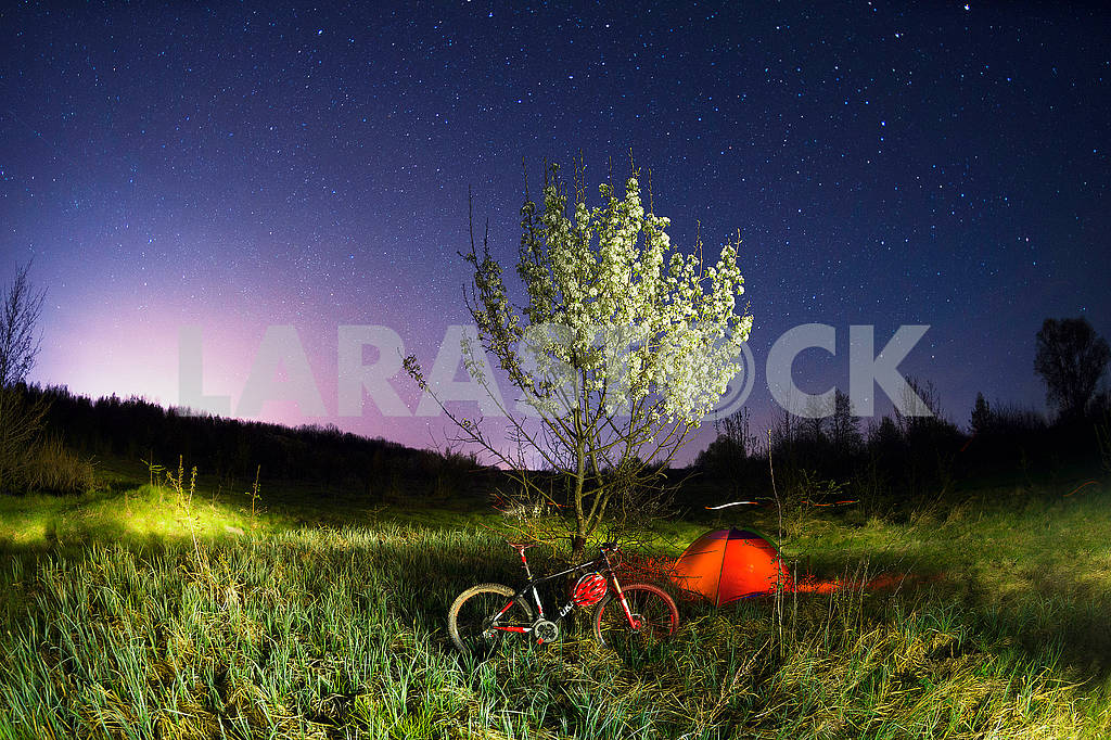 Mountain bike under a blooming tree at night — Image 62726