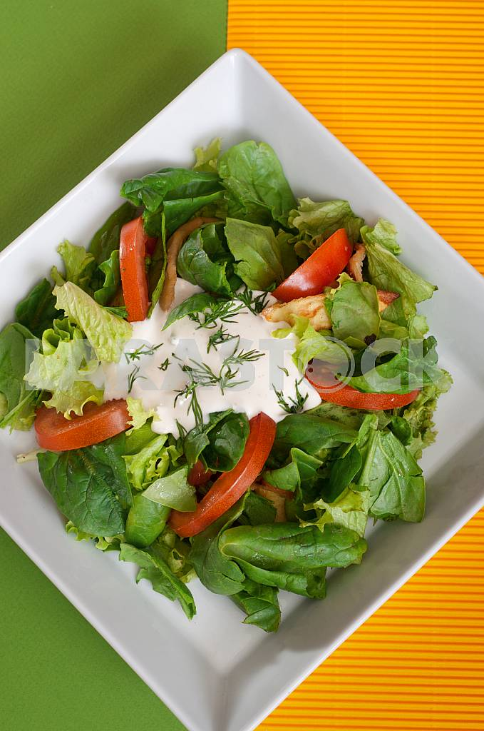 Fresh vegetable salad with sour cream — Image 32777