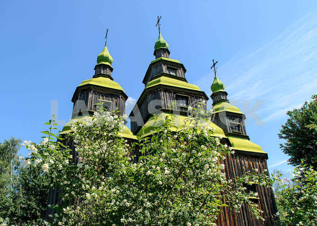 Spring is in the Museum of Ukrainian folk architecture Pirogovo — Image 3248