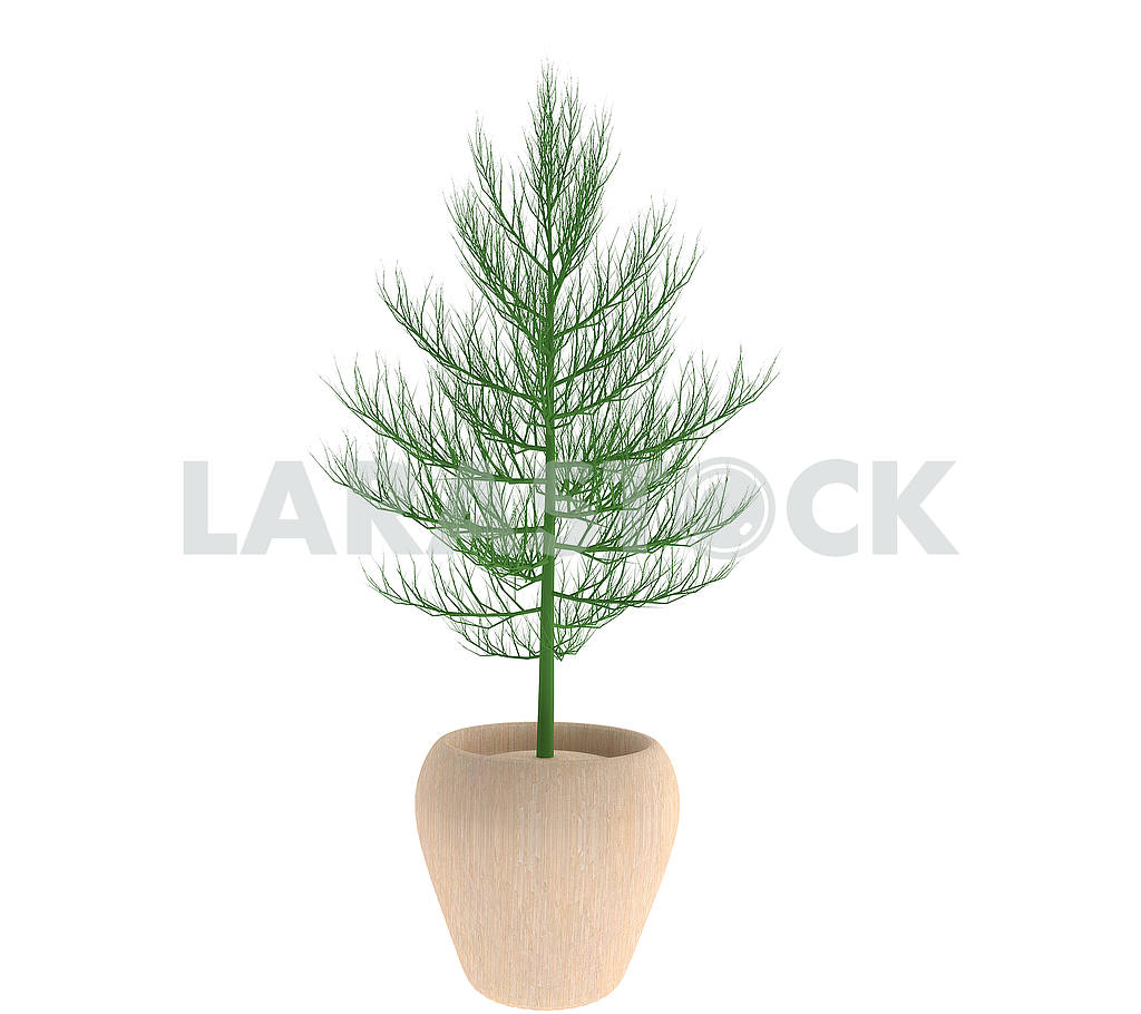 Tree with plot on isolated in 3D render image — Image 53509